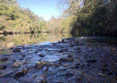 Barrington River
