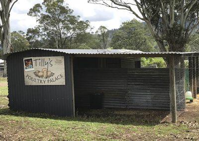 Tillys Poultry Palace